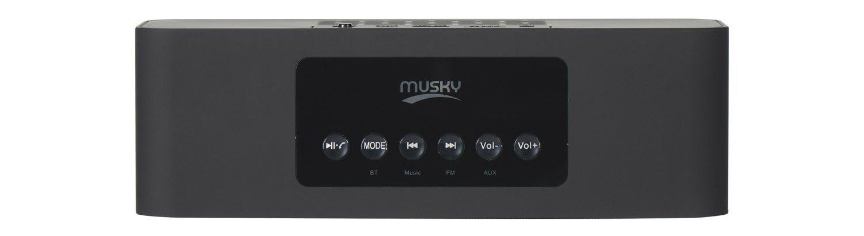 Портативная колонка Musky DY22L с Bluetooth